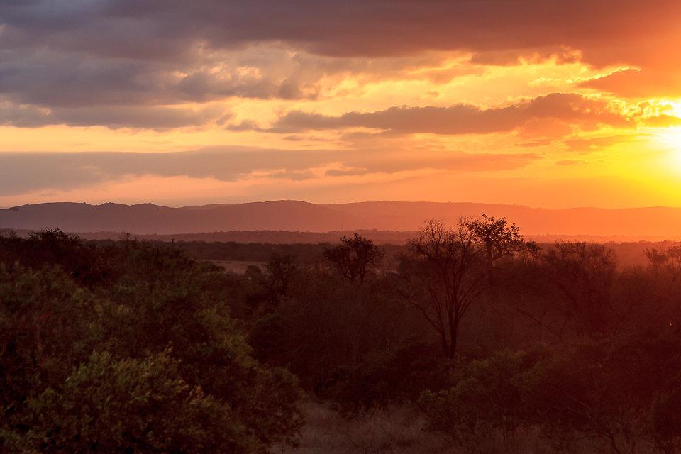 Mkhaya Game Reserve
